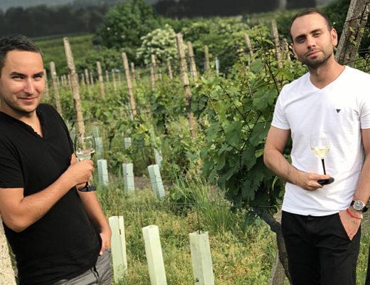 Víno bez histamínu